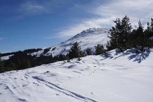 verse sneeuw in bulgarije foto