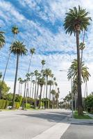 Beverly Hills Street