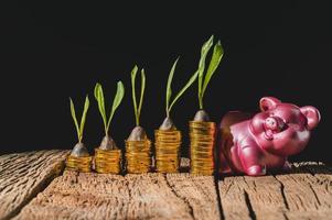 financiële groei met rente foto