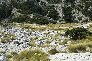 natuurpark biokovo, kroatië foto