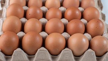 bruine eieren in karton