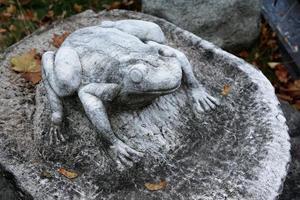 stenen kikker sculptuur foto