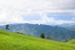 prachtig groen uitzicht op de bergen in het regenseizoen foto