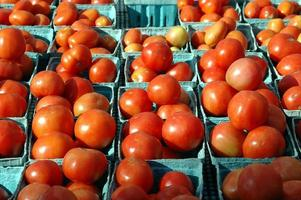 tomaten te koop foto