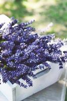 lavendelbloemen in wit dienblad foto
