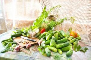 komkommers op tafel met kruiden foto