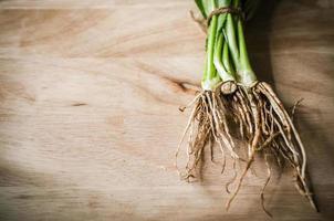 wortel van lange koriander op houten foto
