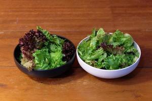 hydrocultuur groente klaar om te eten foto