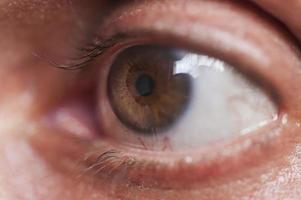 oog macro foto