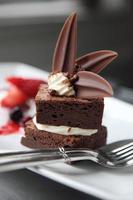 geplateerde chocolade brownie woestijn