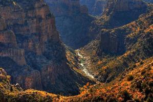 woestijn bergen foto
