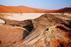 dode vallei in Namibië foto