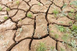 oppervlaktescheur van de grond in een droog gebied foto
