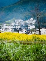 landelijk landschap in wuyuan-provincie, jiangxi-provincie, china