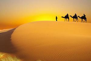 reis naar de sahara foto