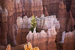 prachtig landschap in Bryce Canyon met prachtige steenforma foto