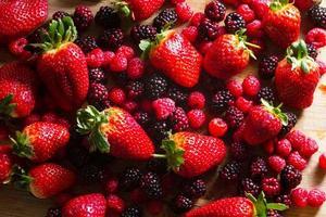 vruchten van het bos