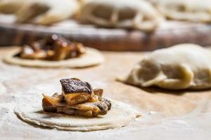 bosingrediënten voor zelfgemaakte dumplings foto