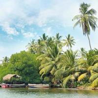 equatoriaal bos en boten op het meer foto