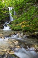 prachtige watervallen in het bos foto