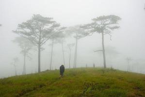 man van de natuur foto