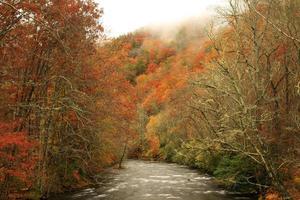 oconaluftee rivier in de herfst foto