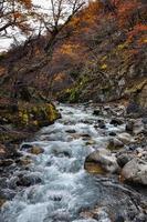 herfst / herfst in Parque Nacional Torres del Paine, Chili