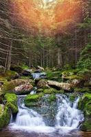 schilderachtige waterval stroomt door bos in retezat bergen foto