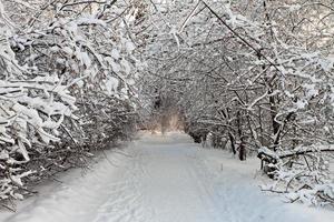 na sneeuwstorm.