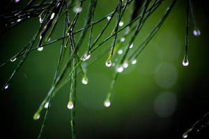 het regent foto
