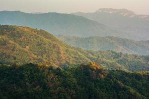 tropisch regenwoud, in nationaal park phu hin rong kla foto