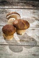 verse boletus edilus champignons op een houten tafel foto