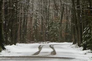 bandensporen op besneeuwde weg foto