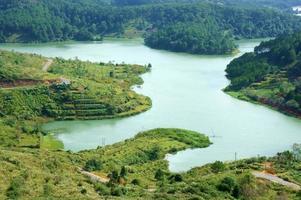 panoramisch uitzicht op het tuyenlam-meer met dennenbos foto