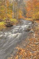bladeren vallen in de bergen