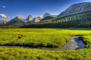 zomer in de bergen foto