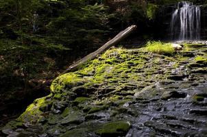 bemoste waterval foto