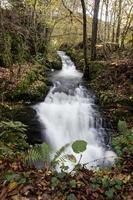 wilde heldere herfst rivier foto