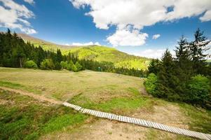 houten brug op de heuvel. berglandschap foto