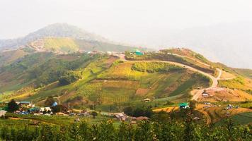 tropisch regenwoud, in phu hin rong kla nationaal park phetchabun foto
