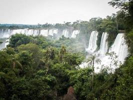 rij watervallen bij Iguazu Falls foto
