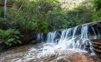 waterval in nsw / australië foto