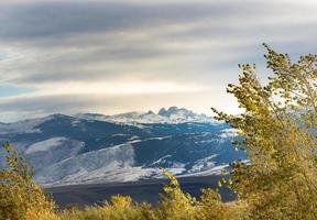 blacktooth berg