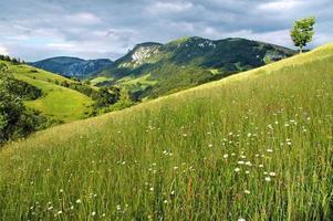 lente in de bergen foto