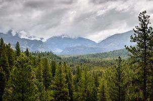 zaagtand bergen foto
