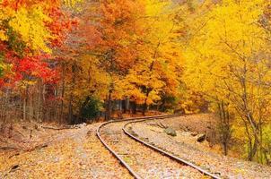 herfst spoorweg foto
