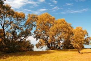 gouden herfst op het meer. foto