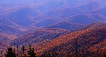 levendige kleuren van de herfst in Smokies, Tennessee foto