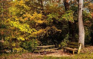 picknick hoek foto