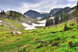 hooggelegen alpine toendra in colorado tijdens de zomer foto